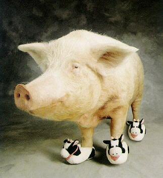 Cerdo con botas