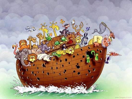 Pajaro carpintero en el arca de noe