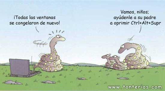 Familia-de-serpientes
