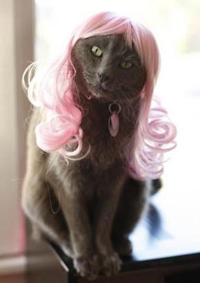 Lady GaTa