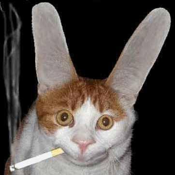 Orejudo y fumador