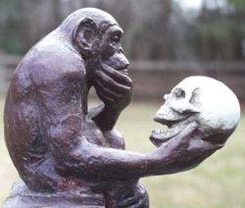 El-mono-pensador