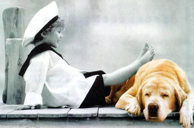 Marinerito y perro