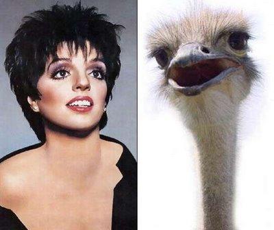 Parecido-Liza Minnelli