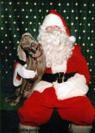 papa Noel y perro