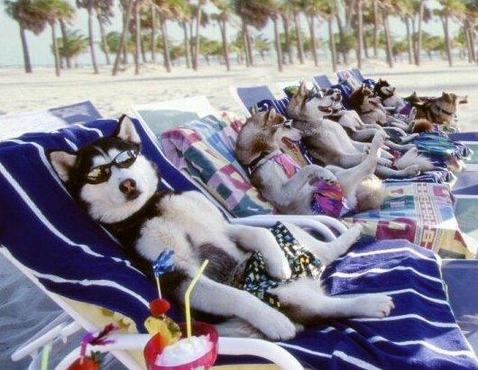 De relax
