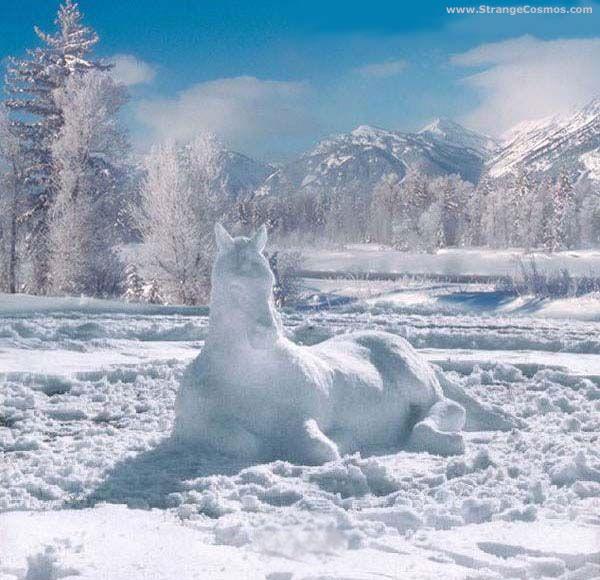 Caballo de nieve