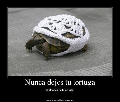 Nunca dejes tu tortuga al alcance de tu abuela