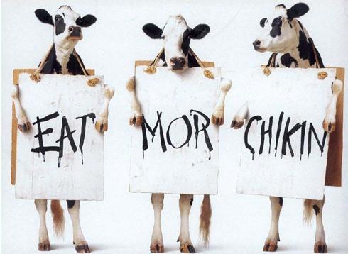 Vacas manifestandose