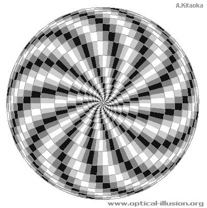 Black and white spiral. (The image is Copyright A. Kitaoka)