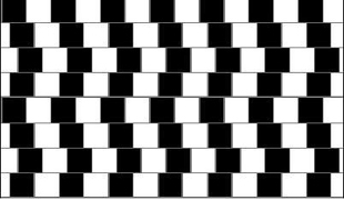 Parallel lines appears to be curved.