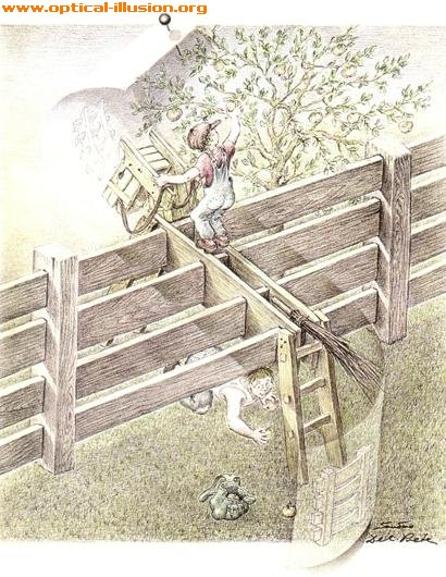 Are the fences vertical or horizontal?