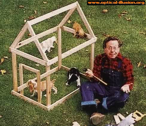 Impossible dog kennel.