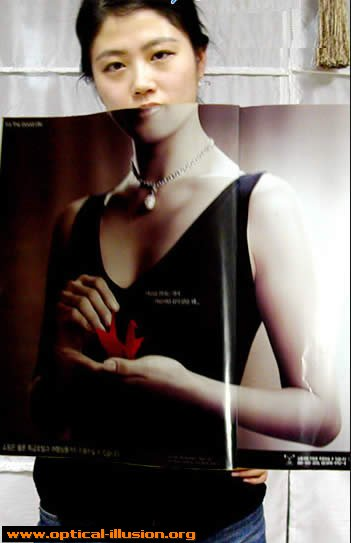Body on the cover of magazine.