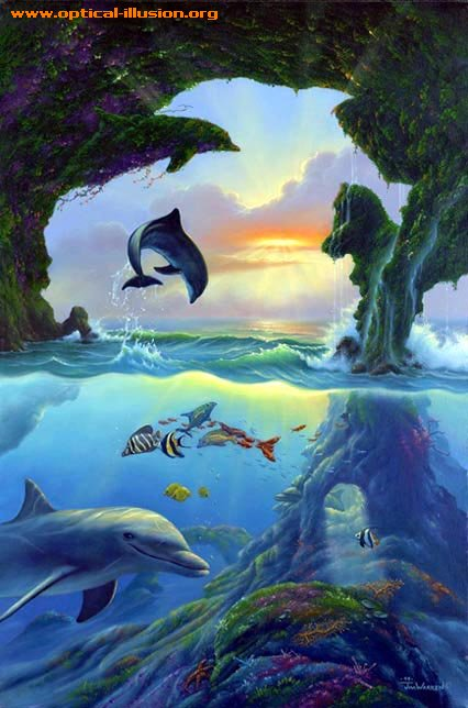 Seven dolphins