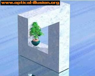 Does the flowerpot face upward or the side wall?