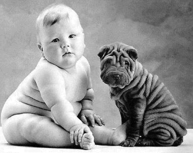 Bebé gordo