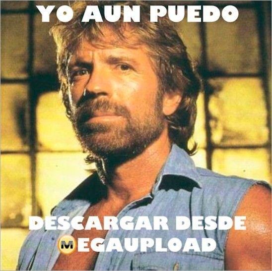 Chuck Norris y Megaupload