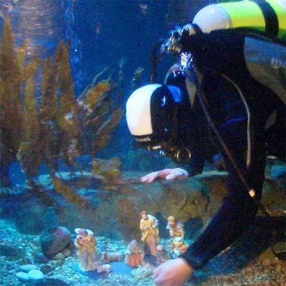 Belen subacuatico