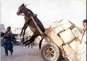 Exceso de carga