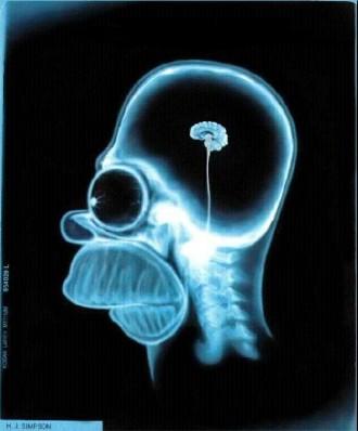 Cerebro de Homer Simpson