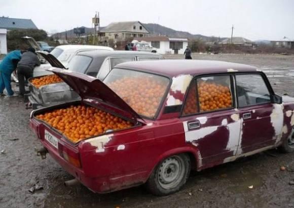 Vendo naranjas