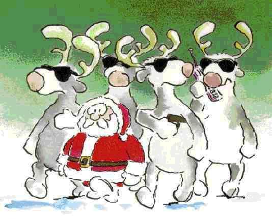 Santa Claus gorilas