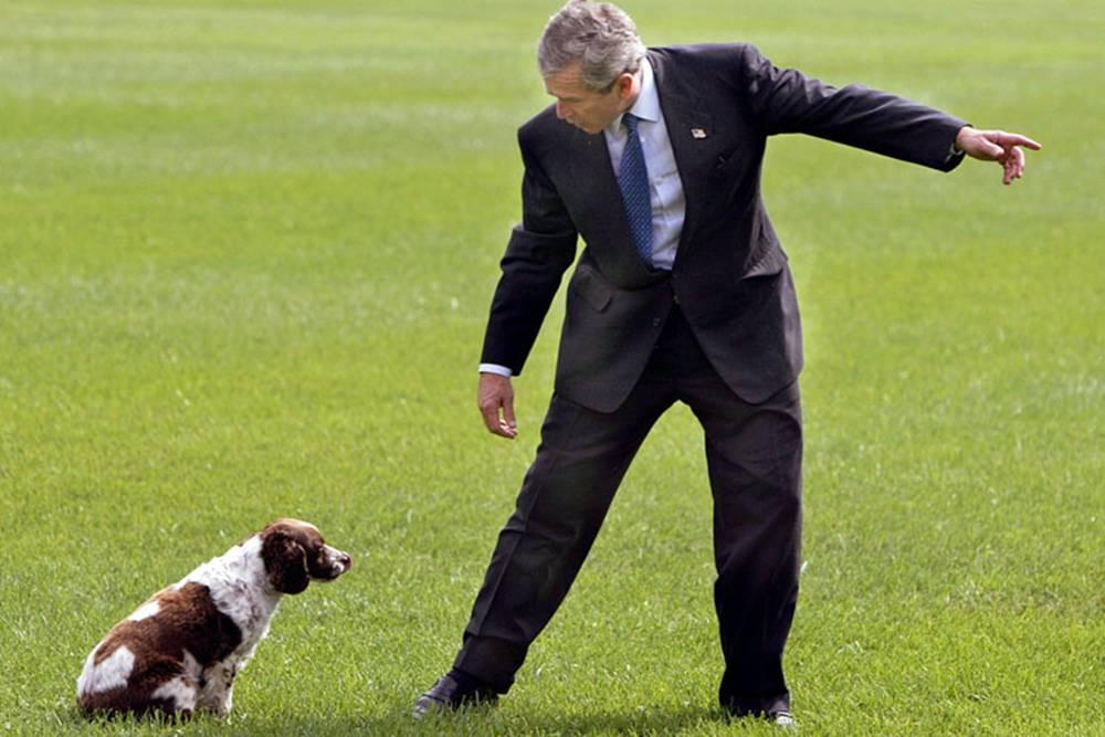 Adios a Bush 14