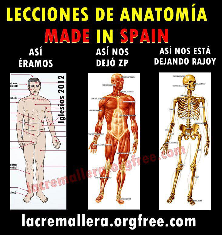 Lecciones de anatomia Made in Spain